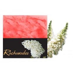 Sapone alla Glicerina - Ratchwadee