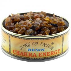 Chakra Energy Resina...